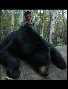 A respectable 475lb (dressed) taken in 2012.   A Boone and Crockett recipient, this was Andy's second bear with Wawang Lake Resort