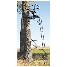 ladder treestand