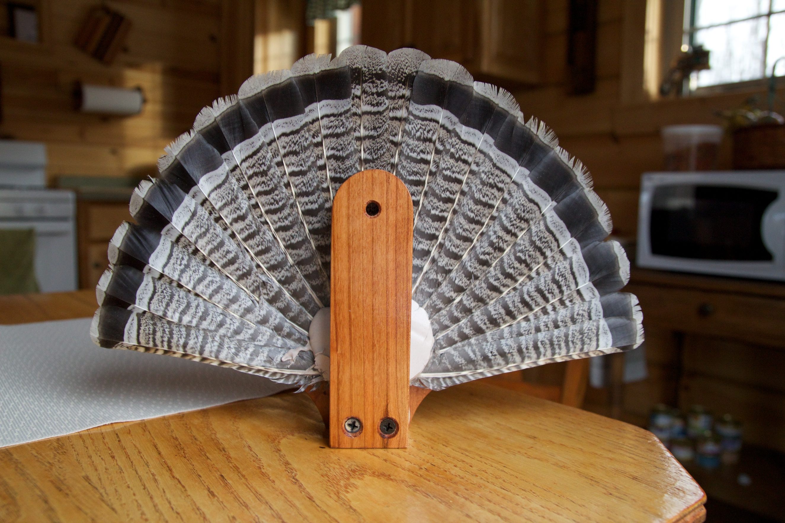 Great Grouse Mount Ideas For All Budgets On Target In Canada