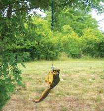 squirrel-bungee-cord-feeder-9533