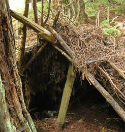lean shelter