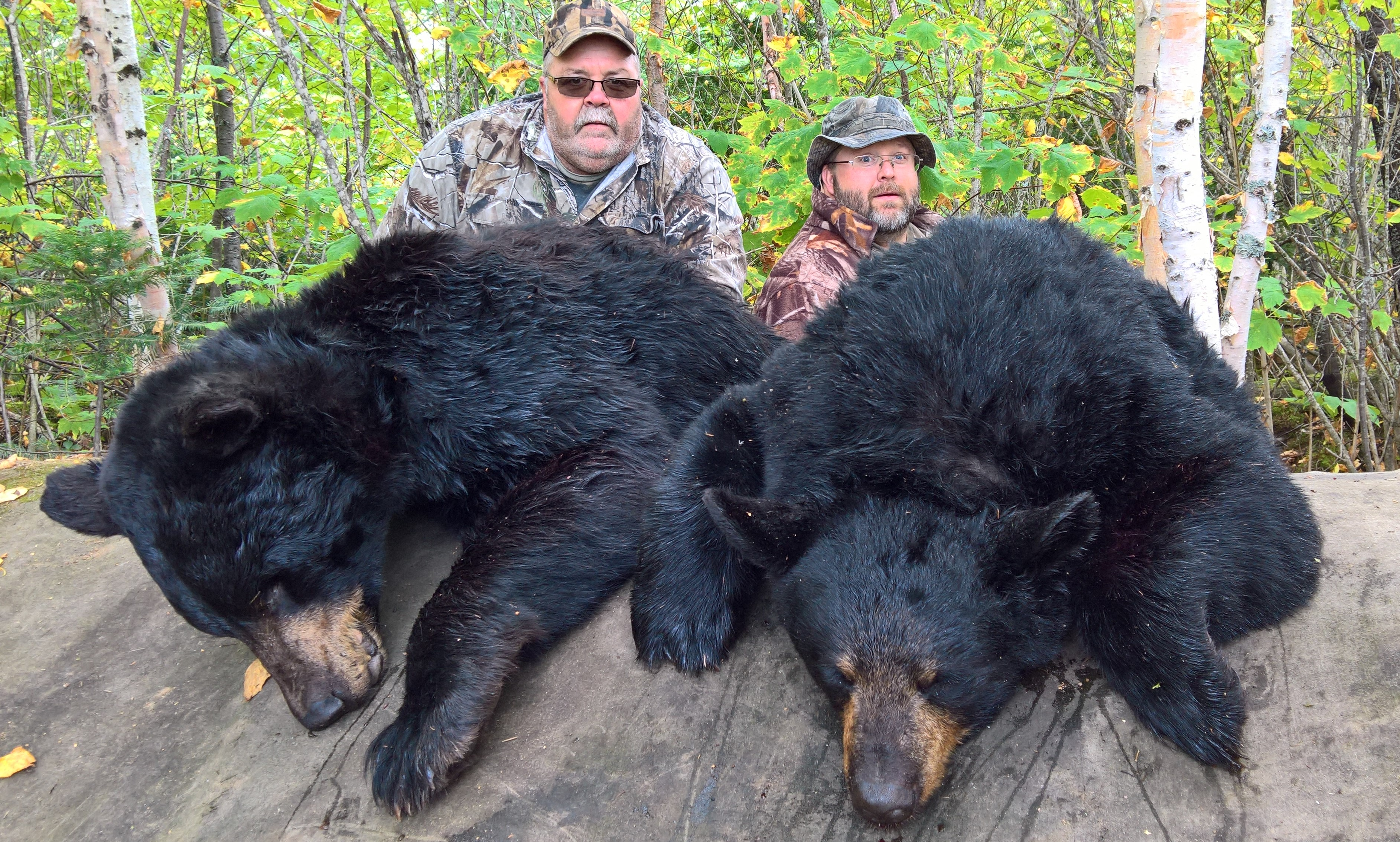 bow   ON TARGET in CANADA